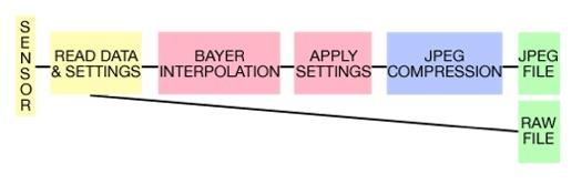 raw spiegazione grafico