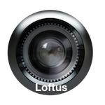 Lente Loftus