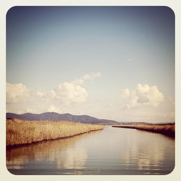 fotografia iphoneografia italia