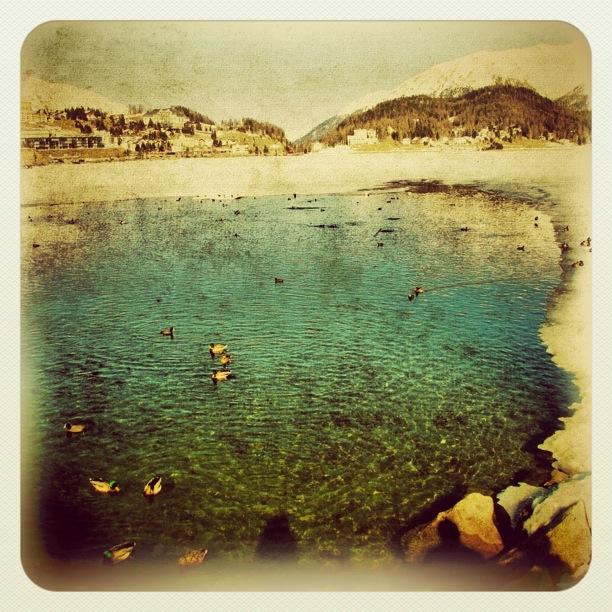 iphoneografia foto italia smartphone