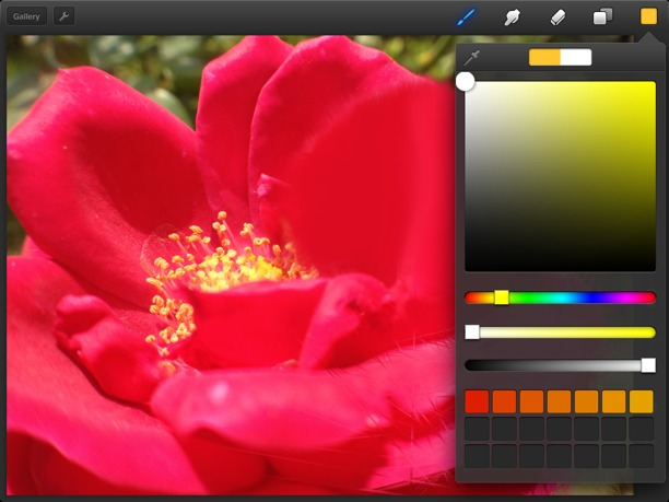 Procreate per iPad22