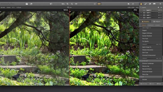 Intensify pro editare fotografia