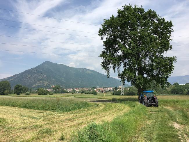 albero trattore test