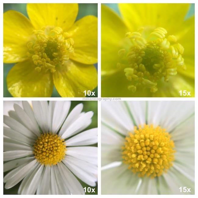 foto olloclip macro 10x 15x