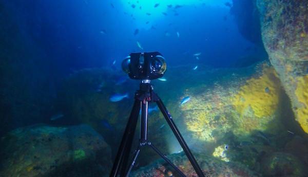 fotocamera boxfish 360 gradi subacquea
