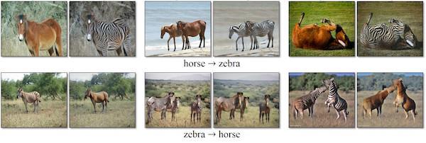 trasformare zebre in cavalli