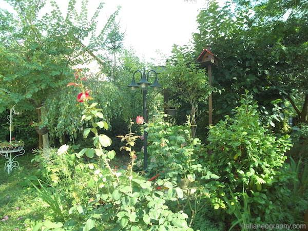 foto giardino hawkeye firefly 8s